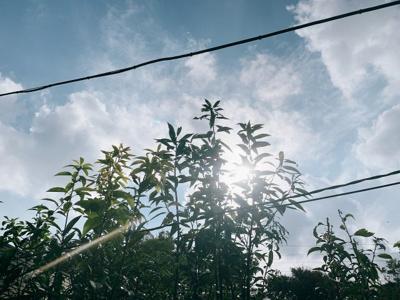 【展望】駒沢公園テラスハウス