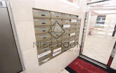 ダイヤ白金 メールボックス