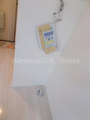 ラ・フォレスタの室内洗濯機置き場(別部屋参考写真)