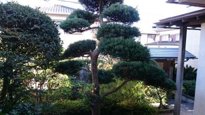 【庭】鳥取市秋里中古戸建て 二世帯向け