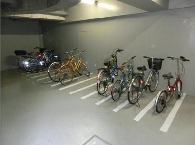 【駐車場】ウッドソレル
