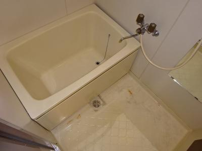 【浴室】ピアドールハーレクィーン
