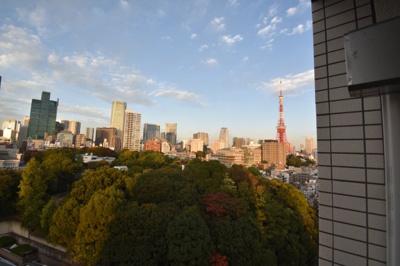 奥に見えるのは東京タワーです。