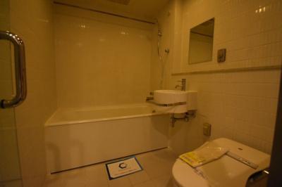 お風呂 トイレは一緒ですがホテルのような大き目空間です。