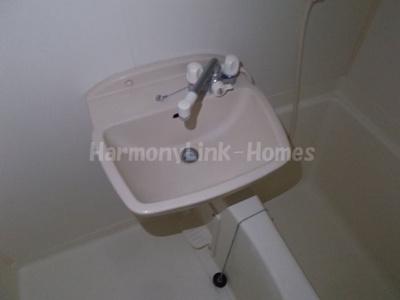 ESTRELLA亀有の洗面台(別部屋参考写真)