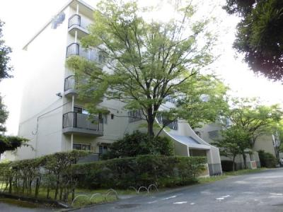 【外観】東大路高野第3住宅第19号棟 5階