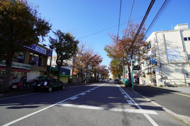 建物目の前の通りです。並木道がきれいで、静かなエリアです。