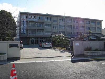 松山市立三津浜中学校 1195m