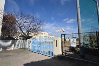 常盤小学校 約350m