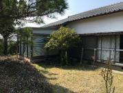 仁井田の画像