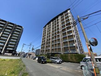 半道橋エリアの11階建てマンションの最上階角部屋です 駐車場空き有り(月7,000円)、那珂小学校徒歩17分