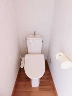 【トイレ】ルピナス