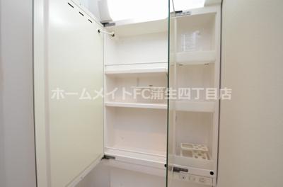 【独立洗面台】パークヒルズ玉造カルミア