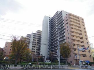 スターコート豊洲、総戸数740戸のビッグコミュニティ。
