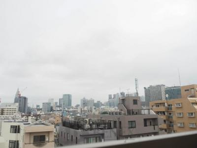ラグジュアリーレジデンス新宿ソラーレの眺望です