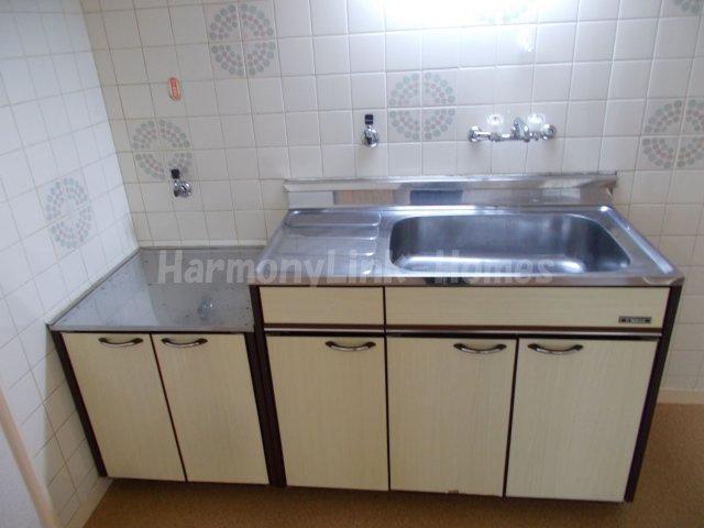 第25大宮ハイツのコンパクトなキッチンで掃除もラクラク