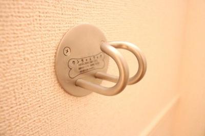 【設備】モデスト レジーナ Ⅲ