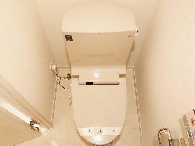 【トイレ】カルティエラタン三軒茶屋