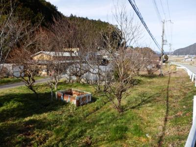 【外観】田路売り農地