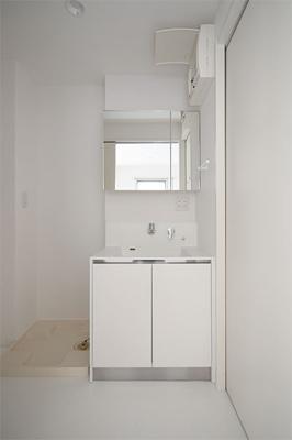 大きくて見やすい鏡とシャワー水栓が便利です