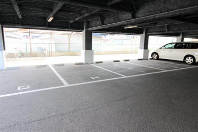 【駐車場】エバーグリーン