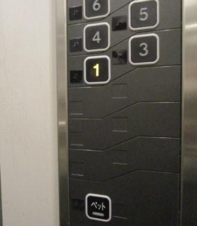 エレベーター内にペットボタンあり
