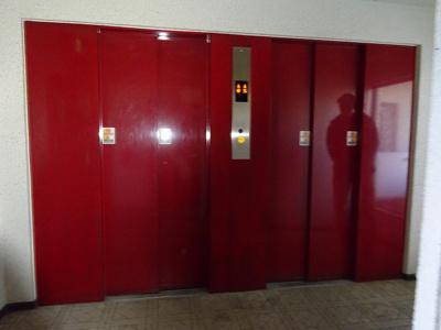 エレベーター二基あります