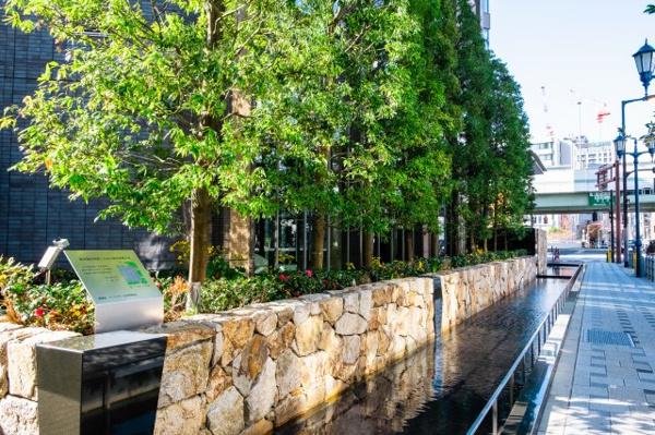 【エレベータホール】木目調のエレベーターホールで温かみのある空間となっています。