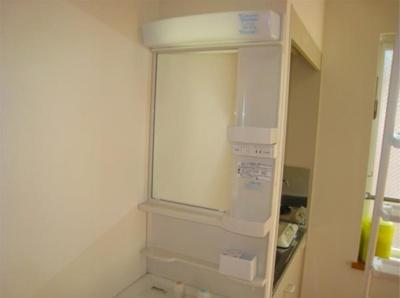 シエスタミントの独立洗面台、小物を置くことができて便利です(別部屋参考写真)