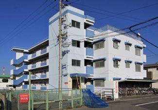 【外観】《高積算!満室!》松山市北斎院町一棟マンション