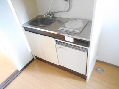 【キッチン】プリムラ
