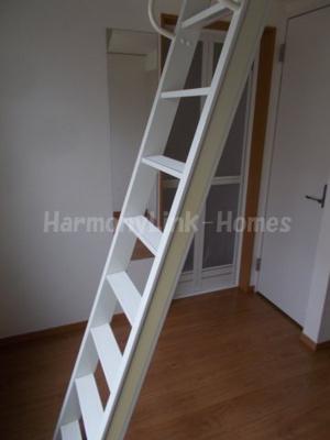 フェリスモーントの梯子☆