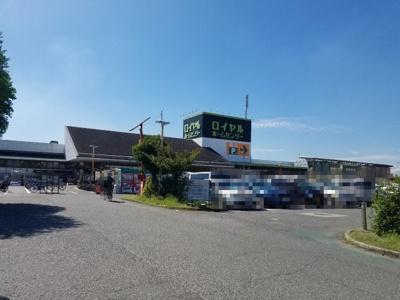 ロイヤルホームセンター堺店 徒歩3分