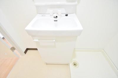 【独立洗面台】アモルフ第二