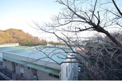 【展望】ヒルハイツ鎌倉 A棟