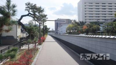 【駐車場】松原梅本ハイツ