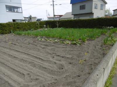 【外観】黒石市ぐみの木・土地