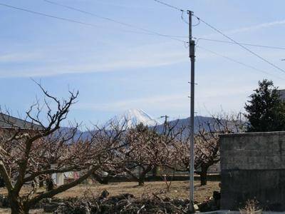 周辺からの眺望 富士山