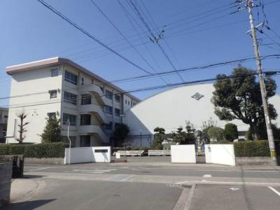 石井小学校 308m