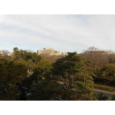 青葉の森公園通りの眺望