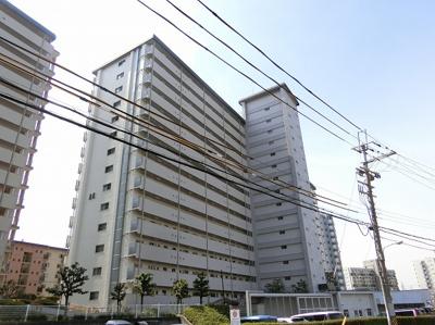 【現地写真】 鉄筋コンクリート造の 338戸の大型マンション♪