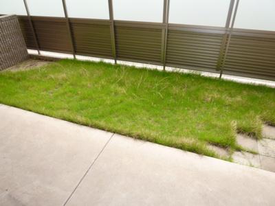 【庭】サンライズ亀甲