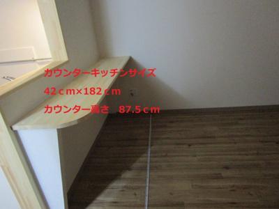 【内装】山坂長屋 A号