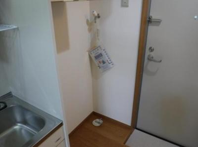 フェリススワンの室内洗濯機置き場★