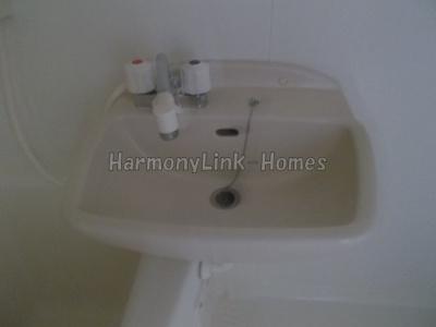 グランデュオ柴又の洗面台(別部屋参考写真)