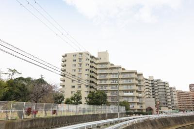 【外観】クローバーハイツ上野芝