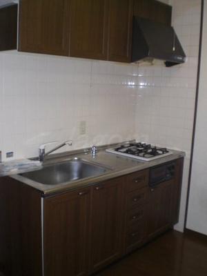 システムキッチン。2口ガスコンロでグリル付き。