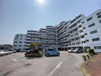 名島駅から徒歩14分、11階建てマンションの4階南向きのお部屋です 駐車場空き有、ペットOK、名島小徒歩5分