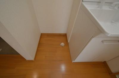 洗濯機置き場 同タイプ別室の参考写真