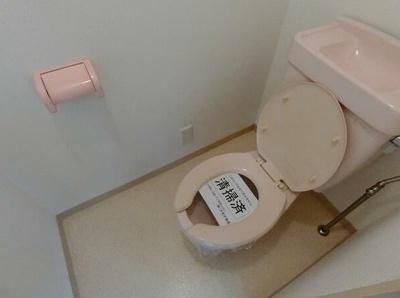 【トイレ】第二塚越フラット